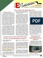 SBE Noticias 351