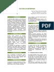 2017-02-21_58ac61b64c12f_234.CulturadaBeterraba.pdf