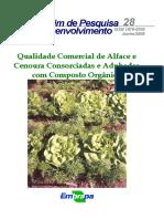 Bot028 - Qualidade Comercial de Alface e Cenoura Consorciadas e Adubadas Com Composto Orgânico.