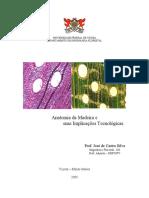 Anatomia Da Madeira e Suas Implicações Tecnológicas