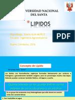 Lipidos Clase 3 (2)