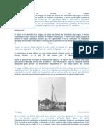 Patologías en Pilotes de Madera