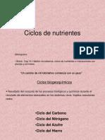 4c-ciclosnutrientes