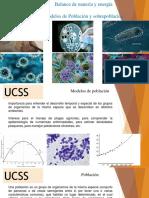 Modelos de Población y sobrepoblación, Eutrofización (1).pdf