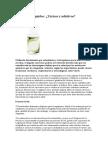 Correctores líquidos toxicidad