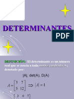 13. DETERMINANTES.ppt
