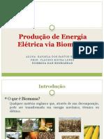 Produção de Energia Elétrica via Biomassa