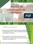 Mtodos de Conservao de Forragem Novo