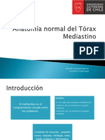 Anatomía Normal Del Tórax