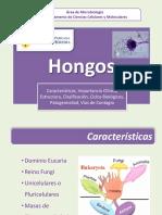 Clase Hongos Enfermeria 2014 - II