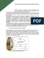 CEREALESpara Enviardocx-1 (1)