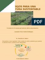 Armando Nerio Guedez Rodríguez - Consejos Para La Agricultura Sustentable