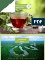 Taller de Plantas Medicinales (Presentación Comercial)