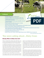Students FarmCare DairyCows