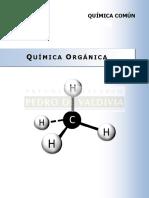 245452292-guia-9-quimica-pdv.pdf