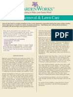Moss Removal & Lawn Care