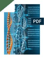 Hronologija Dekodiranja Ljudskog Genoma