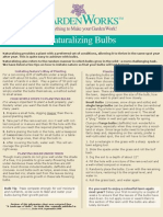 Bulbs. Naturalizing Bulbs