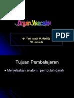 Organ Vasculer-dr Yani