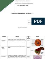 cuadrocomparativoorganelosyfunciones-110709114528-phpapp01