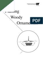 Planting Woody Ornamentals