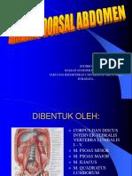 DINDING DORSAL,Diaphragma Ss,Ao,V.cava Inf 2007