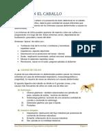 COLICO EN EL CABALLO.pdf