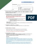Plantilla_Informe de Práctica