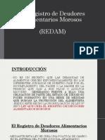 El Registro de Deudores Alimentarios Morosos (1)