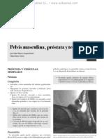 Resonancia magne¦ütica pelvis masculina, pro¦üstata y testi¦üculo