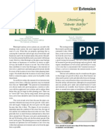 Choosing Sewer Safer Trees