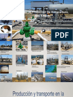 Proceso de Producion de Hidrocarburo