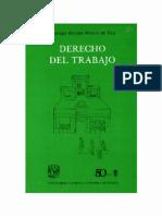 Barajas Montes De Oca Santiago - Derecho Del Trabajo.pdf