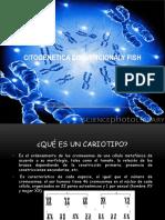 CITOGENETICA CONVENCIONALY FISH 6-6-14.pptx