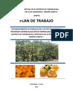 Plan de Trabajo Naranja