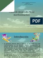 desarrollo morfosintaxis