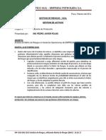 Gestión de Riesgos - Informe.pdf