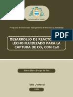 Desarrollo de Reactores de Lecho Fluido para captura de CO.pdf