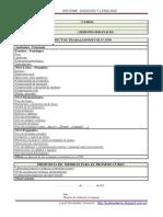 InformeFinal_Plantilla