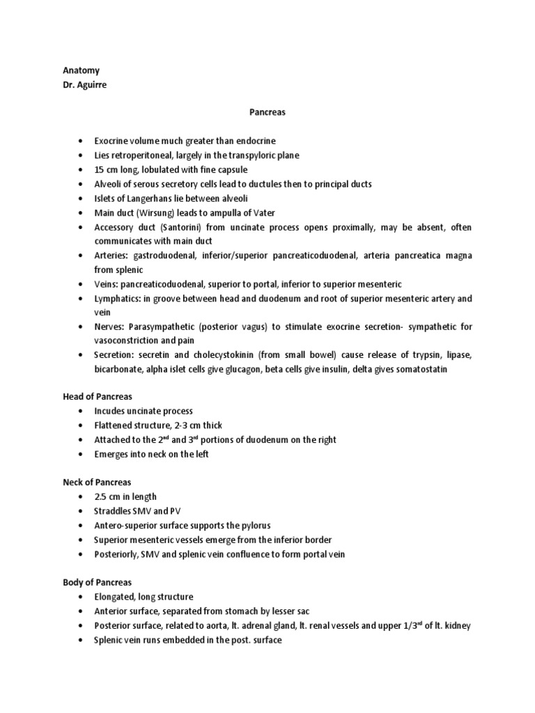 Anatomy Pancreas | Pancreas | Gastroenterology