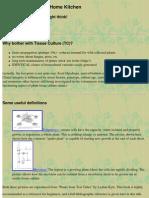 Plant Tissue Culture for Home Gardeners | Sterilization