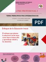 PRINCIPIOS PEDAGÓGICOS (1).pdf