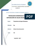 Monografia de Biosolidos