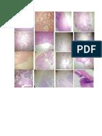 Patología Placas