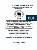 flotacion tesis.pdf