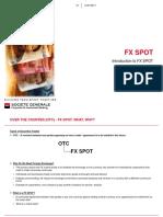 FX-Spot-Presentation-edit-over-wk.pptx