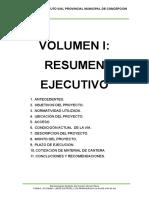 VOLUMEN I (Resumen Ejecutivo)