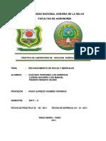 Informe-de-La-Practica-Minerales-y-Rocas.docx