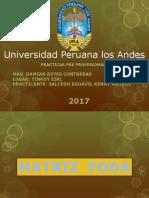 Diapositivas FODAqqqqqq.pptx