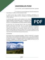 Ecosistema en Puno 2